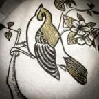 T shirt Birds